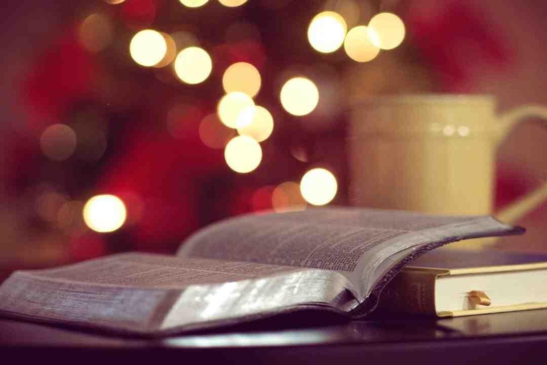 How books of bible were chosen