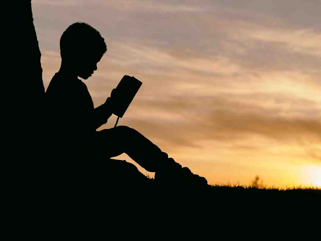 What is importance of reading?
